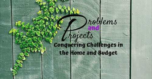 Problems and Projects